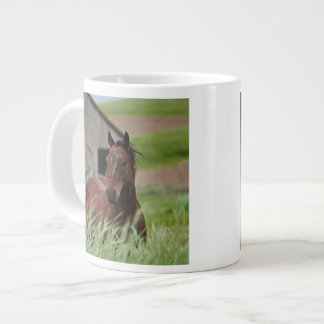 Viewing horses in a field in the Palouse Jumbo Mug
