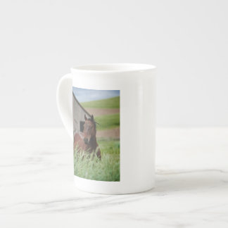 Viewing horses in a field in the Palouse Porcelain Mug