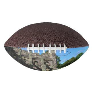 Views of Holyrood Abbey Football