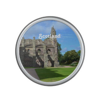 Views of Holyrood Abbey Speaker