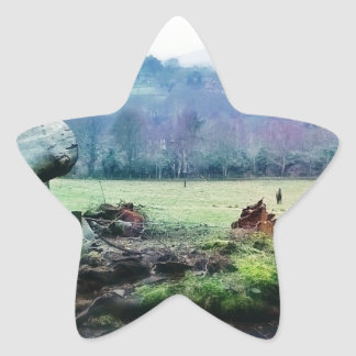 Views of the Countryside Star Sticker
