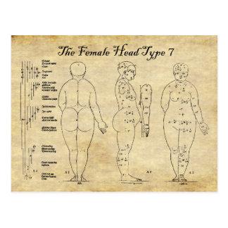 Views of The Female Head Type 7 Postcard