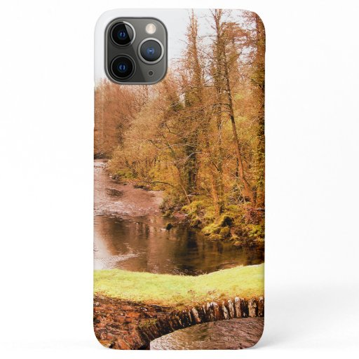 VIEWS OF WALES iPhone 11 PRO MAX CASE