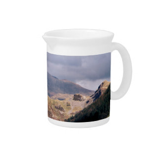 VIEWS OF WALES DRINK PITCHER
