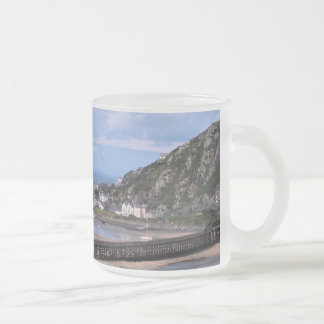 VIEWS OF WALES FROSTED GLASS COFFEE MUG