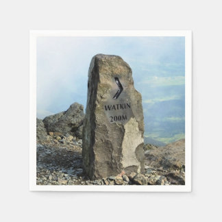 VIEWS OF WALES PAPER NAPKIN