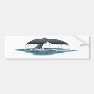 Vigilante de la ballena pegatina de parachoque