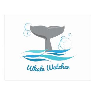 Vigilante de la ballena tarjeta postal