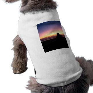 Vigilante de la puesta del sol ropa para mascota