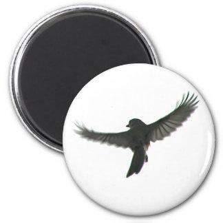 Vigilante de pájaro iman