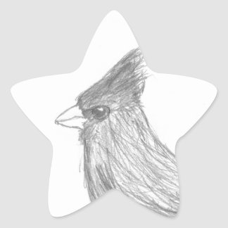 Vigilante de pájaro calcomanía forma de estrella personalizadas