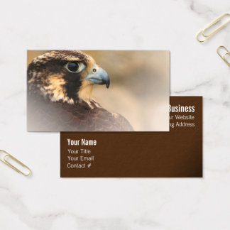 Vignetted Profile of a Peregrine Falcon Business Card