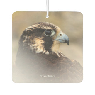 Vignetted Profile of a Peregrine Falcon Car Air Freshener