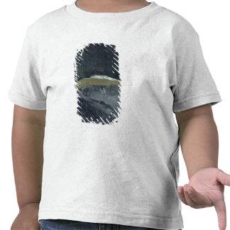 VII vago, 1900-01 Camisetas