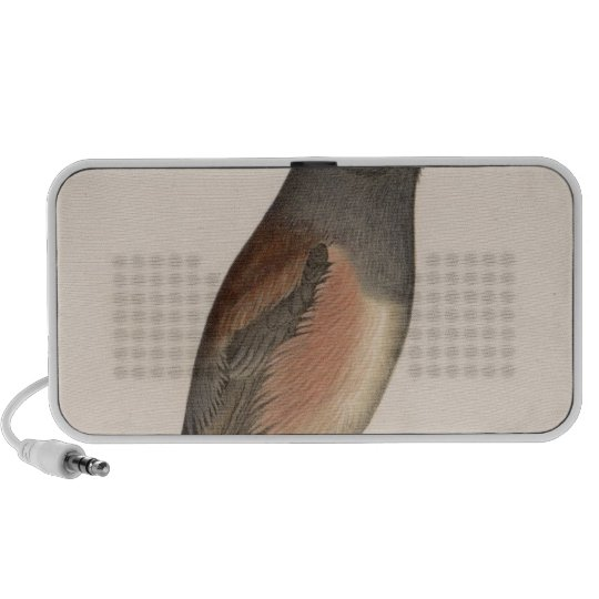 VIII Junco oregonus Portable Speaker