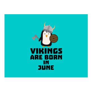 Vikings are born in June Zj328 Postcard