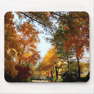 Village Street in Autumn Mousepads