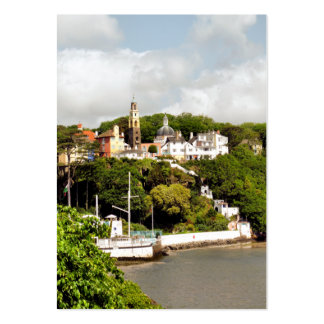 VILLAGES OF WALES LARGE BUSINESS CARD