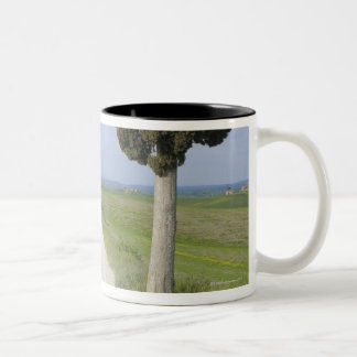 Ville di Corsano, Monteroni d'Arbia, Siena Two-Tone Coffee Mug