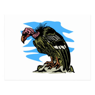 Vilma Vulture Postcard