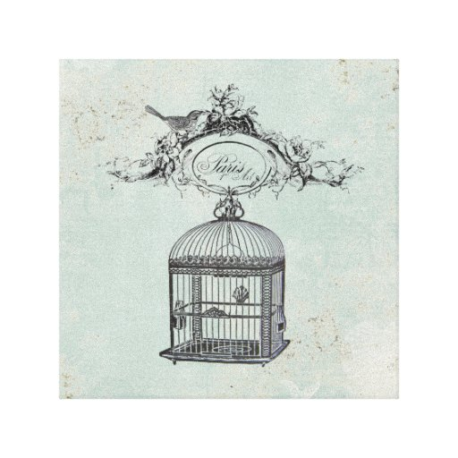 Vinage French Birdcage and bird stretched canvas