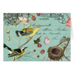 Vinage French Birds notecard Cards