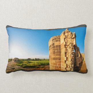 Vinatge Fort Pillow
