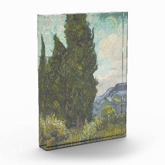 Vincent van Gogh - 0016
