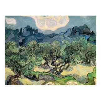 vincent van gogh (1853-1890) - the olive trees (18 postcard