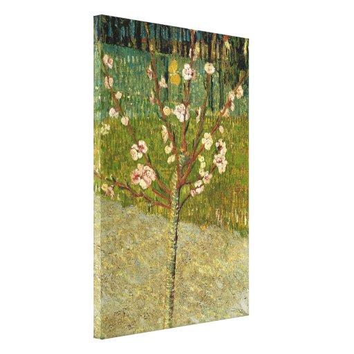 Vincent van Gogh - árbol de almendra en flor Impresion De Lienzo