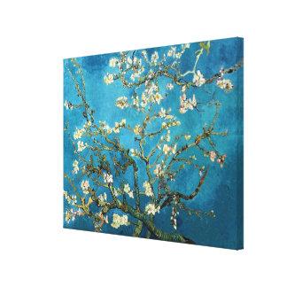 Vincent van Gogh, Blossoming Almond Tree Canvas Print