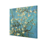 Vincent van Gogh Branches with Almond Blossom Gallery Wrapped Canvas