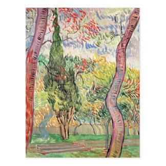 Vincent van Gogh el | el jardín del hospital de Tarjeta Postal