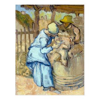 Vincent van Gogh el esquilador Tarjeta Postal
