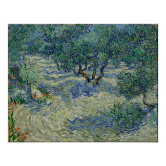 Vincent van Gogh - huerta verde oliva Póster