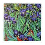 Vincent van Gogh - iris - bella arte del amante de Azulejo Cuadrado Pequeño