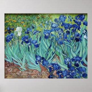 Vincent van Gogh, iris Impresiones