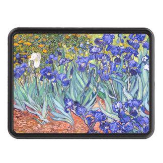 Vincent Van Gogh Irises Floral Vintage Fine Art Hitch Covers