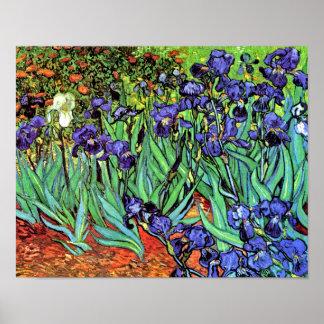 Vincent Van Gogh - Irises - Flower Lover Fine Art Poster