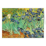 Vincent Van Gogh - Irises Greeting Cards