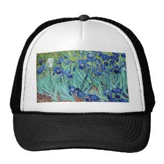 Vincent van Gogh Irises Mesh Hats