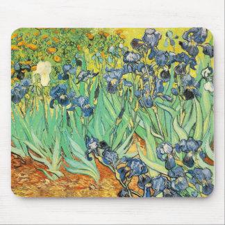 Vincent Van Gogh - Irises Mouse Pad
