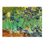 Vincent van Gogh,Irises Post Card
