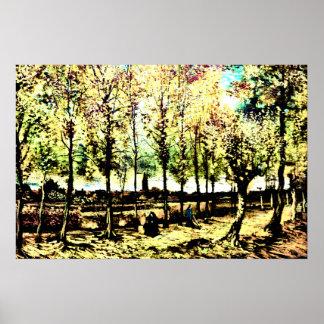 Vincent van Gogh - los álamos en Nuenen 3 Poster