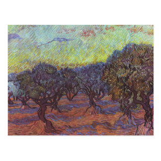 Vincent Van Gogh - Olive Grove Postcard