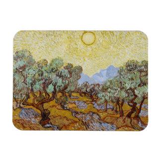 Vincent van Gogh | Olive Trees, 1889 Magnet