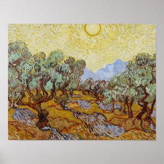 Vincent van Gogh - Olive Trees Poster