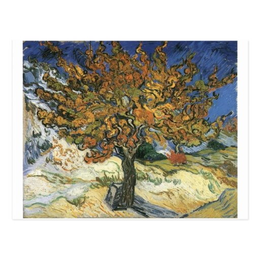 Vincent Van Gogh Painting: Van Gogh Mulberry Tree Postcard