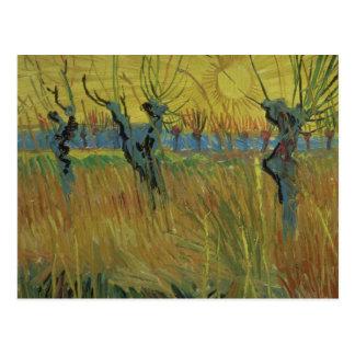 Vincent van Gogh | Pollarded Willows, Setting Sun Postcard