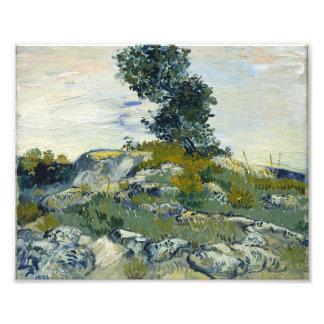 Vincent Van Gogh Rocks With Oak Tree Fine Art Photo Print